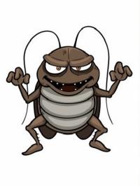 Защо имамe хлебарки в дома си – основни причини?